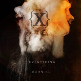 Rockinrecords: IAMX – Everything is Burning (Metanoia Addendum)
